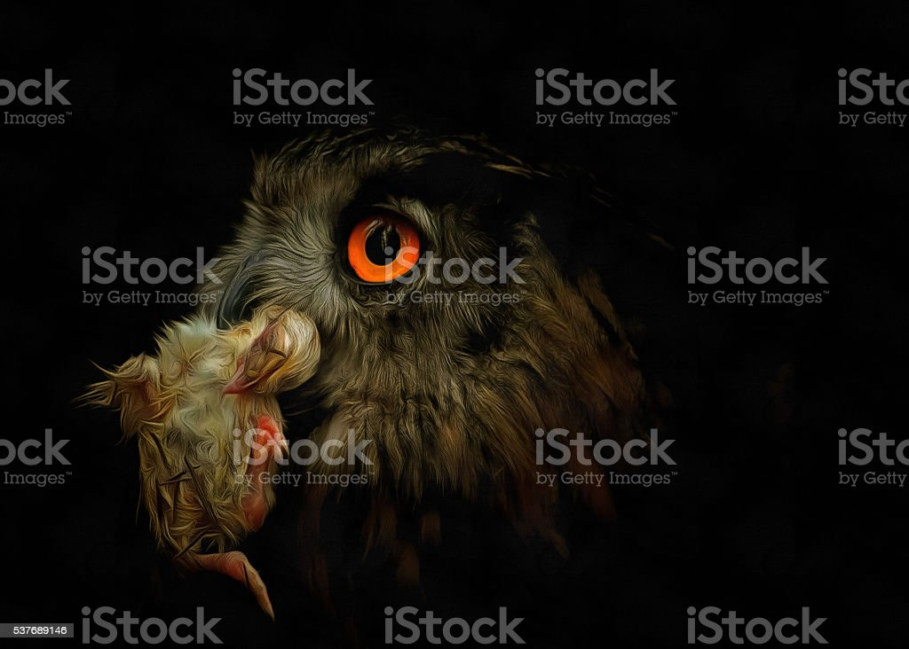 Owl with prey stock photo