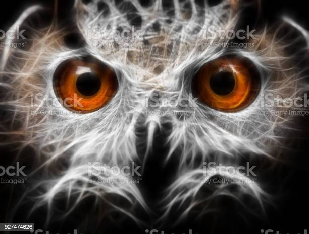 Owls portrait owl eyes abstract painting fractal picture id927474626?b=1&k=6&m=927474626&s=612x612&h=3ecxuqf ctiz2a4pdce6akg4kzzvz5j ypmfcedoxhw=