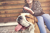 istock owner caressing gently her dog 614848516