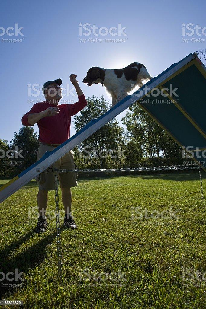 Proprietario principale cane su telaio ad A foto stock royalty-free