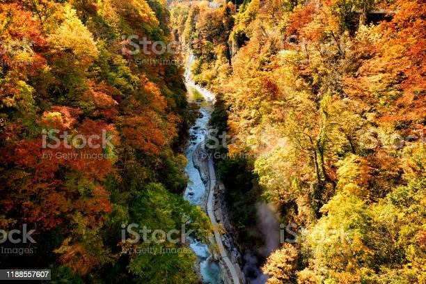 Photo of Oyasukyo Gorges yuzawa-city in akita japan, autumn leafs