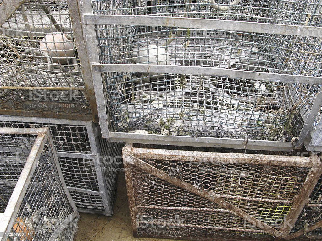 Oyster Cages Close Up royalty-free stock photo