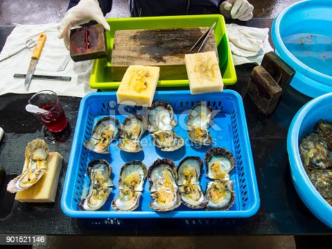 istock Oyster in the farmer to make the pearls 901521146