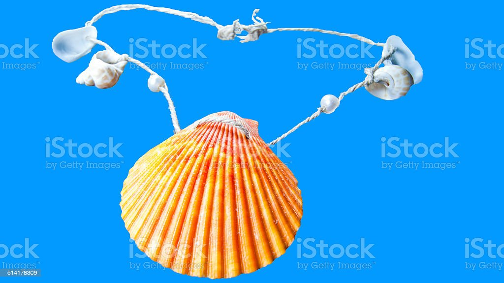 oyster necklace stock photo