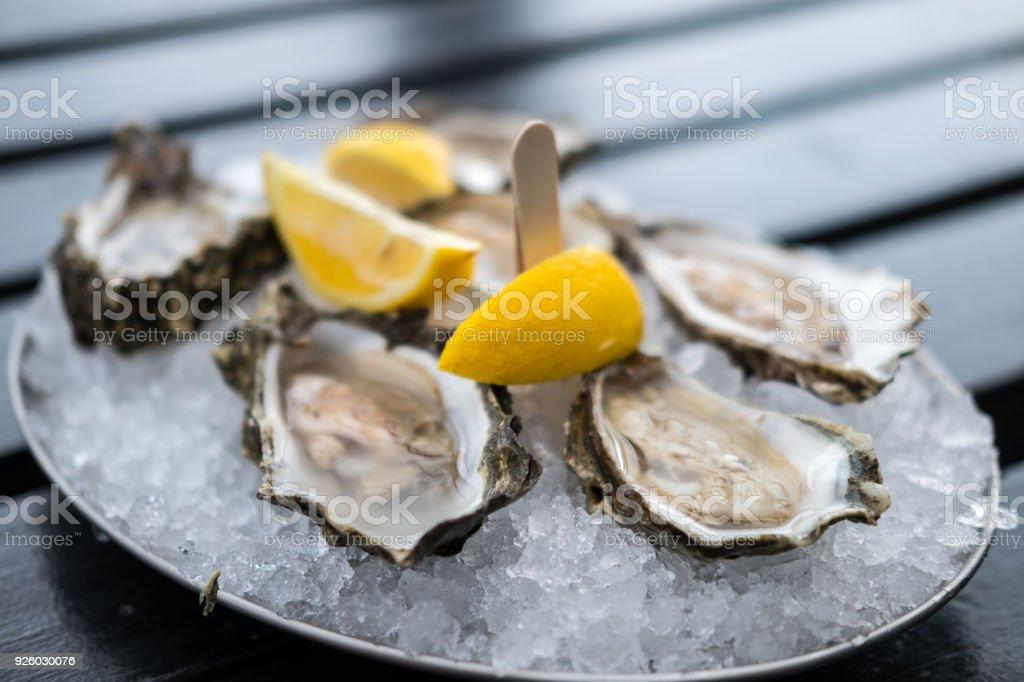 Austern mit Zitrone auf Teller. – Foto