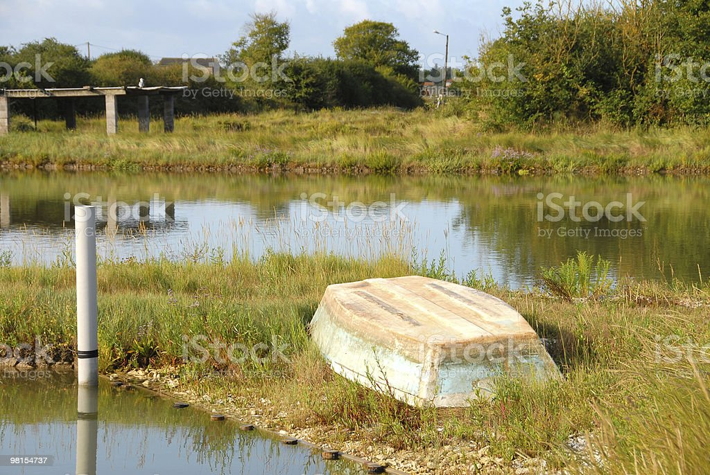 Oyster Park Fields royalty-free stock photo