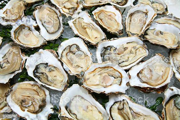 Oyster Stock Photo - Download Image Now