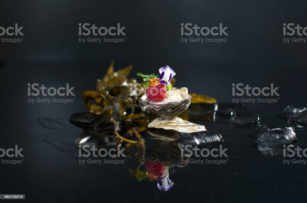 oyster royalty-free stock photo