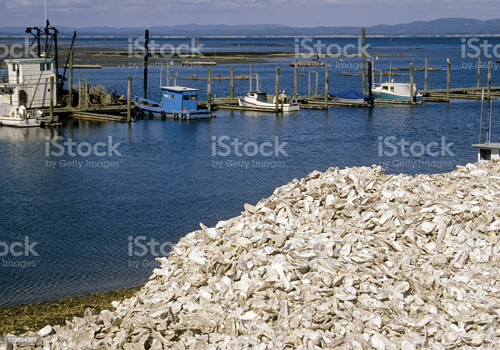 Oyster shells and boats in harbor stock photo