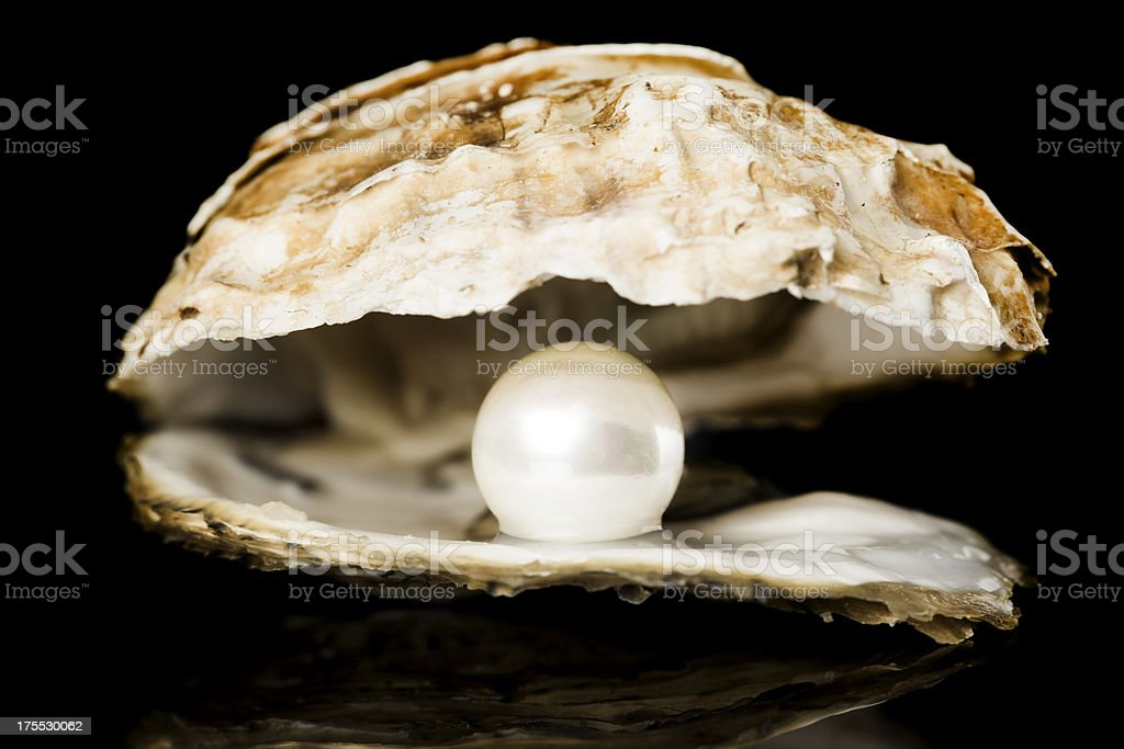 Oyster with pearl royalty-free stock photo