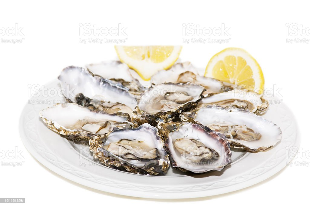Oysters and lemon on white background stock photo