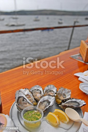 Fresh Oysters at Tomales Bay