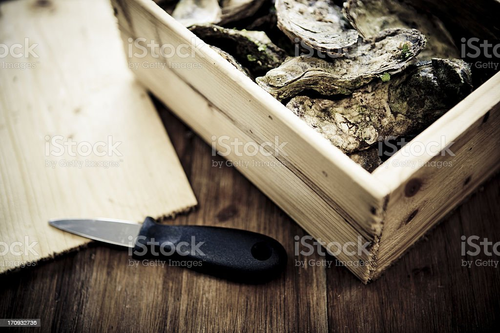 Oysters Box stock photo
