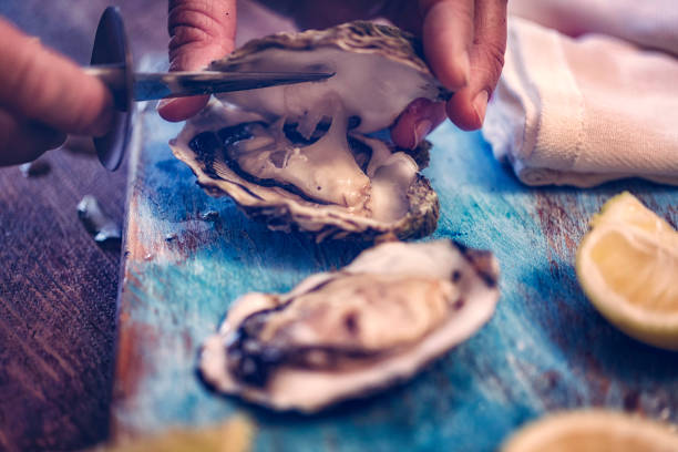 oysters on plate with ice and lemon - oyster stock pictures, royalty-free photos & images
