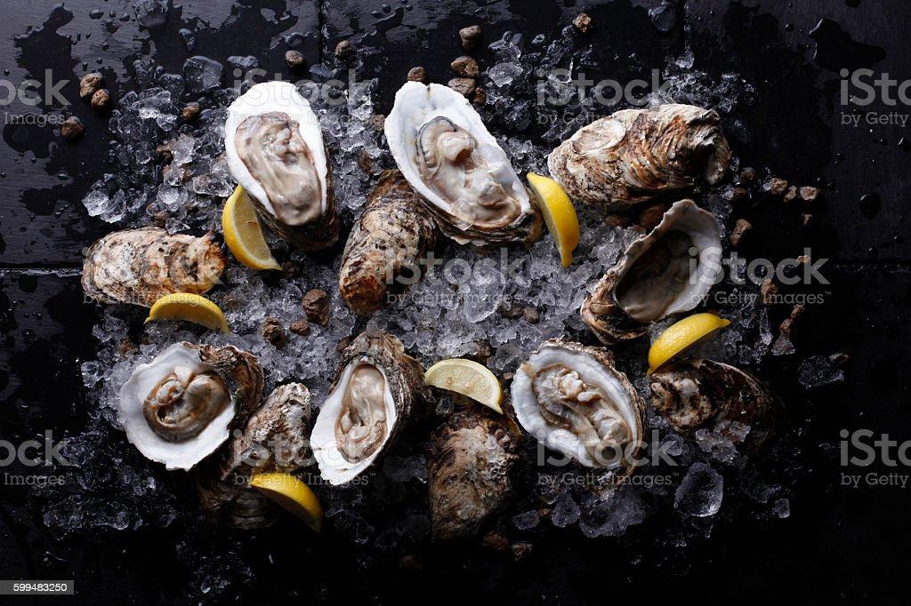 Austern auf stone-Platte mit Eis und Zitrone – Foto