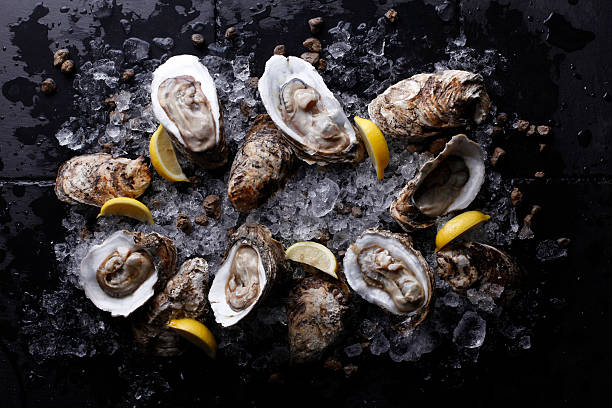 oysters on stone plate with ice and lemon - oyster stock pictures, royalty-free photos & images