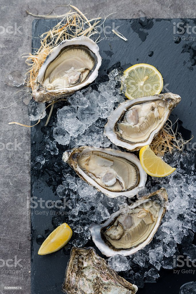 Austern im Eis mit Zitrone – Foto