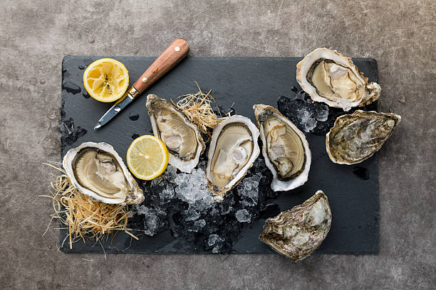 oysters on the ice and lemon - oyster stock pictures, royalty-free photos & images