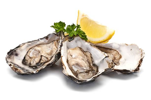 oysters - oyster stock pictures, royalty-free photos & images