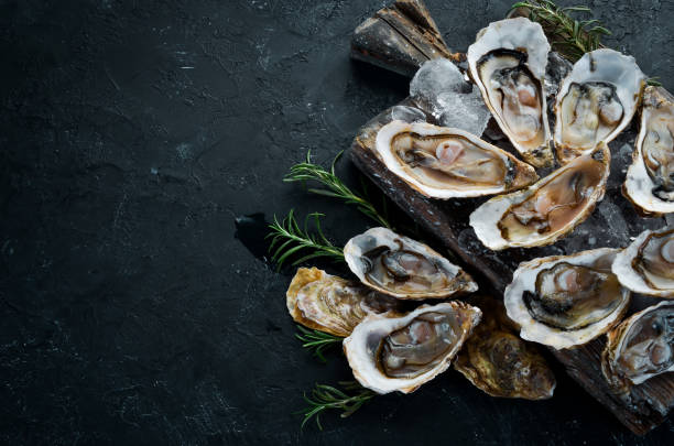 Oysters with ice and lemon on black stone background. Seafood. Top view. Free copy space. Oysters with ice and lemon on black stone background. Seafood. Top view. Free copy space. mollusk stock pictures, royalty-free photos & images