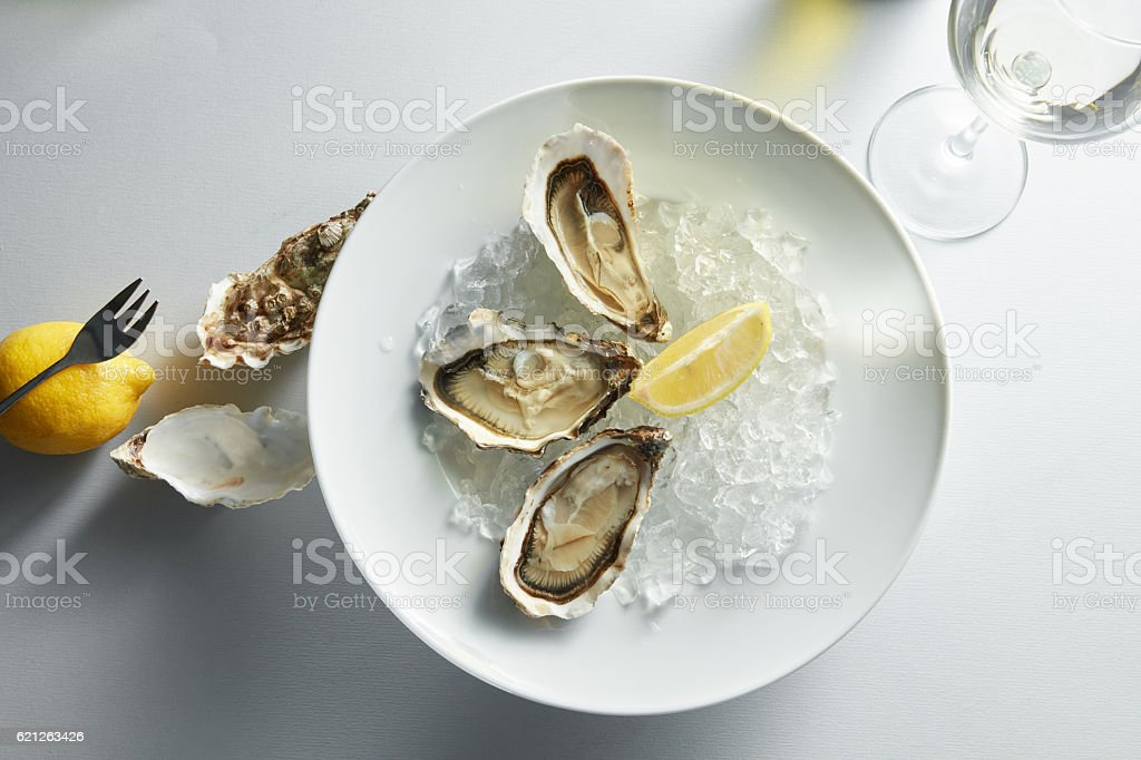 Oysters with lemon on plates stock photo