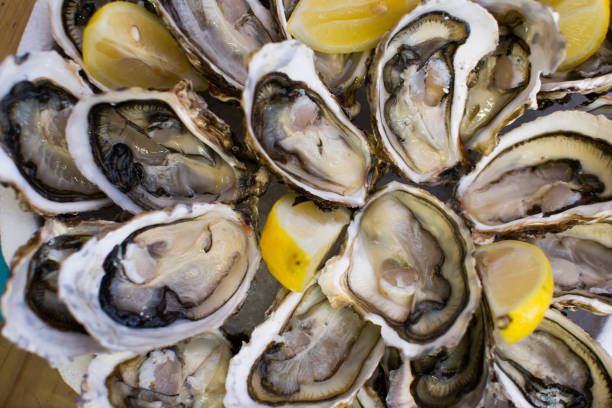 oysters with lemon - oyster stock pictures, royalty-free photos & images