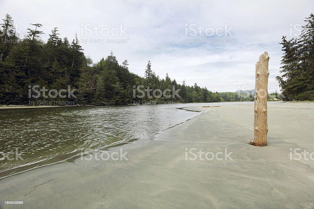 Pachena River stock photo