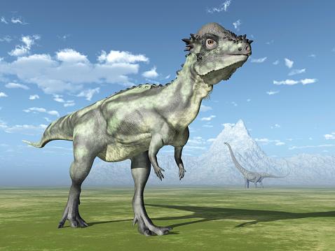 Pachycephalosaurus And Mamenchisaurus Stock Photo - Download Image Now