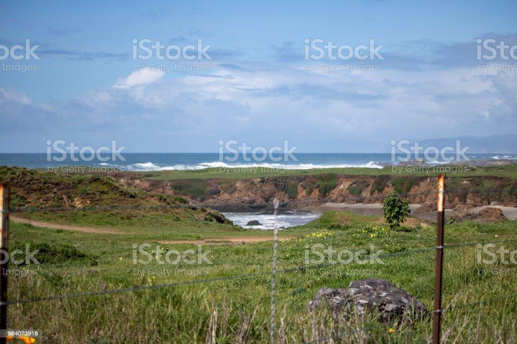 太平洋沿岸の風景 - アメリカ合衆国のロイヤリティフリーストックフォト