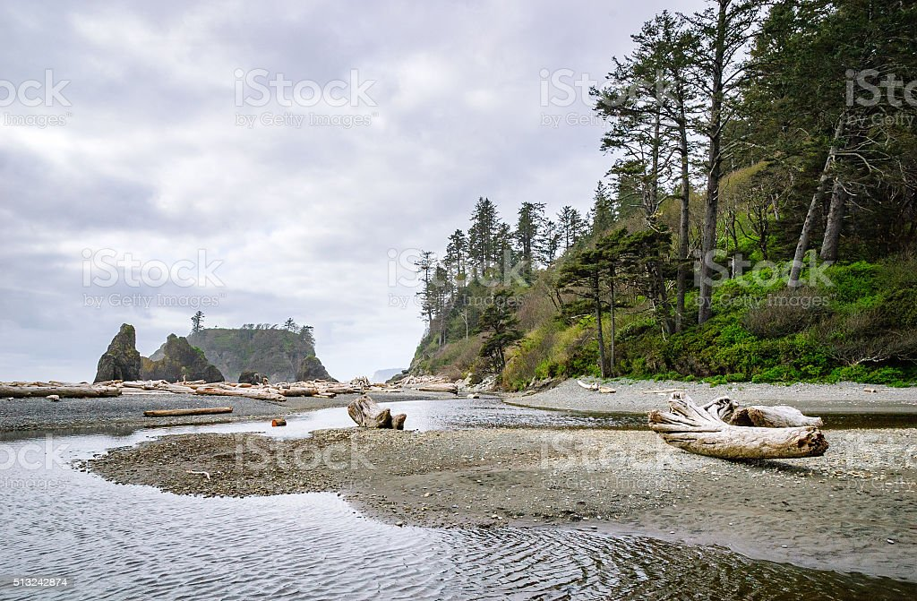 Pacific coast, Olympic National Park stock photo