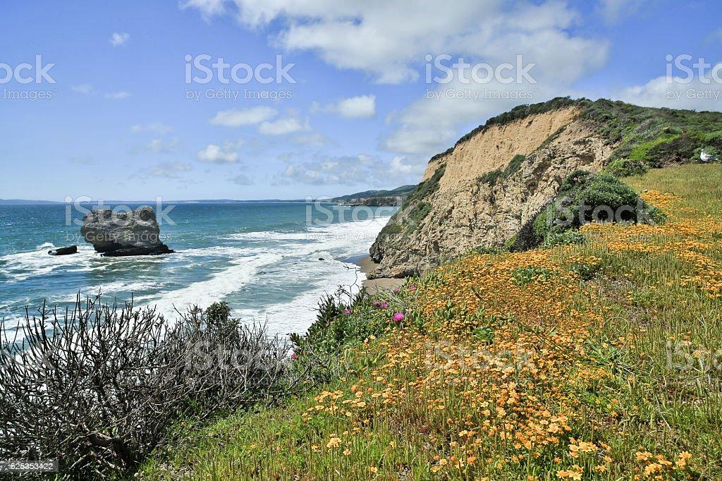 Pacific Coastline in Point Reyes National Seashore stock photo