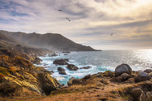 Pacific coastline scenery