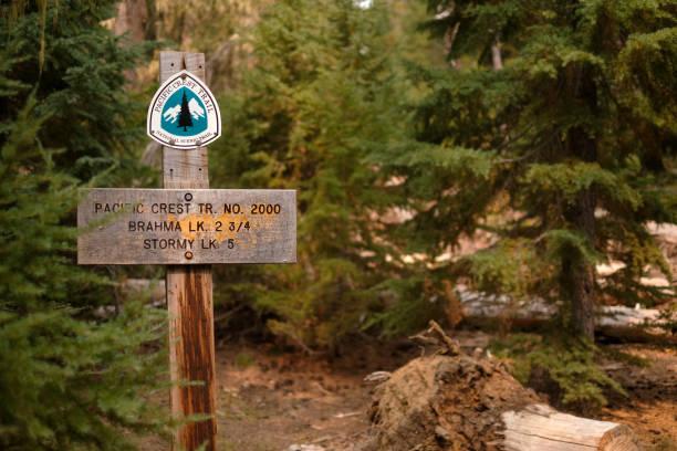 pacific crest trail zeichen in oregon cascades wildnis - pacific crest trail stock-fotos und bilder