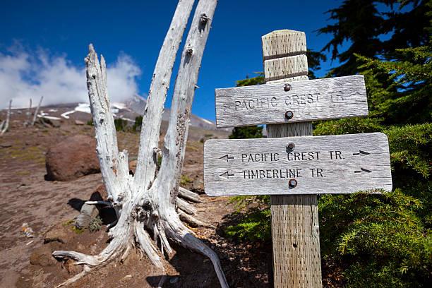 pacific crest trail -. - pacific crest trail stock-fotos und bilder