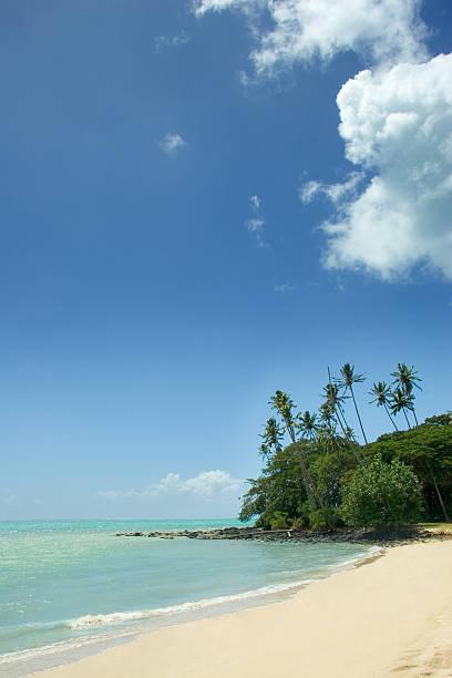 Pacific Island Beach stock photo
