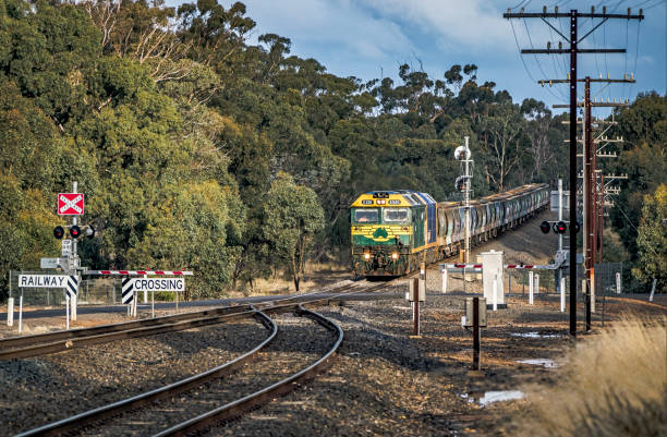 pacific national grain train bursts into sunlight approaching road crossing - railway signal stock photos and pictures