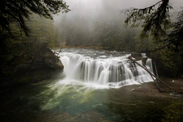 pacific northwest wasserfall im wald - pacific crest trail stock-fotos und bilder