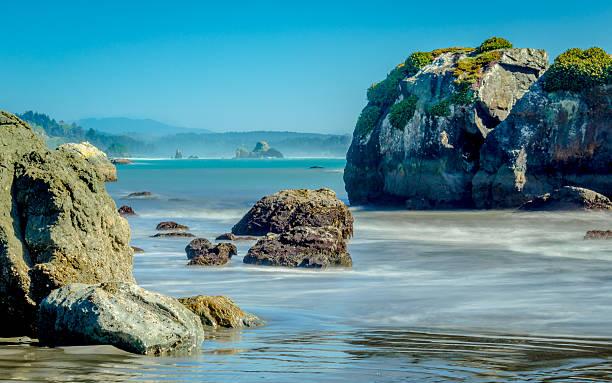 Pazifik-Küste – Foto