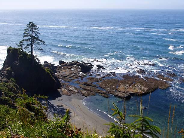 Pacific Ocean – Foto