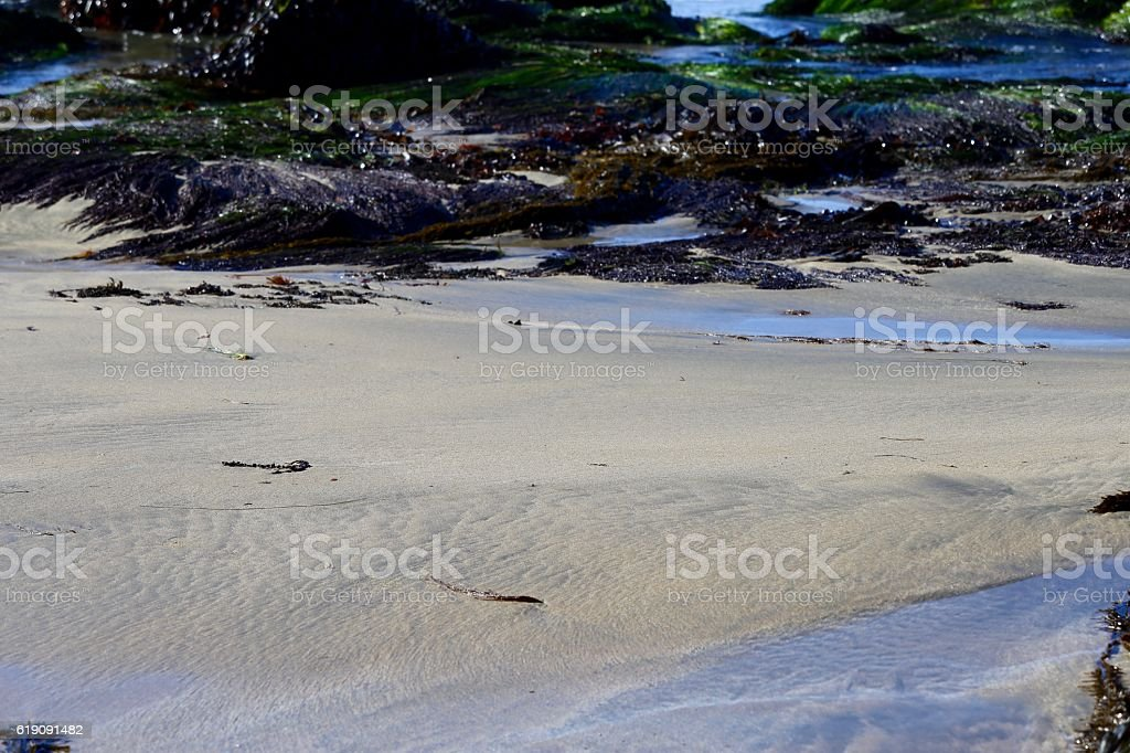 Pacific Ocean Retreating stock photo