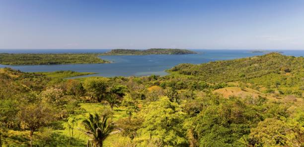 Pacific Ocean Scenic Wide Panoramic Landscape and Tropical Marsh Wetland Viewpoint in Panama Chiriqui Province stock photo