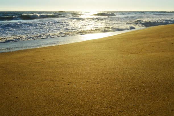 Pacific ocean sea shore stock photo