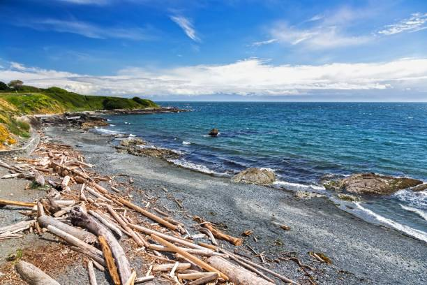Pacific Ocean Waterfront Landscape on Victoria BC Dallas Road stock photo