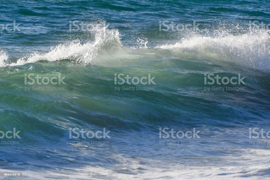 Pacific Ocean Waves - Royalty-free Beach Stock Photo