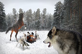 istock pack of wolves and horses 638006168
