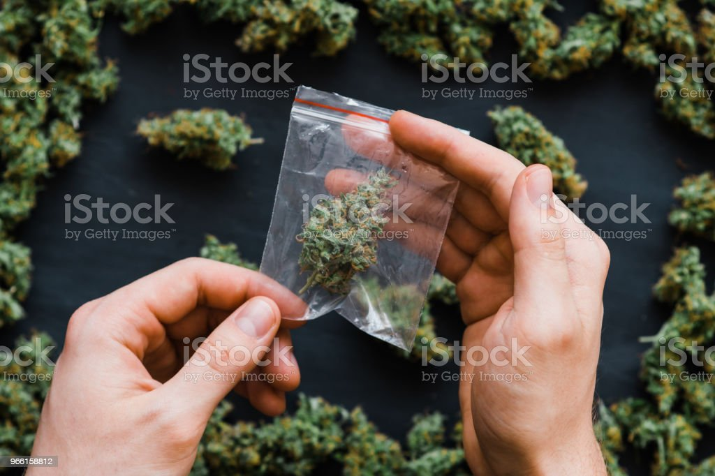 Package weed in hand .A lot of marijuana Package with weed and fresh buds of cannabis many weed. Copy spase Copy-space joint fresh green buds - Royalty-free Botão - Estágio de flora Foto de stock