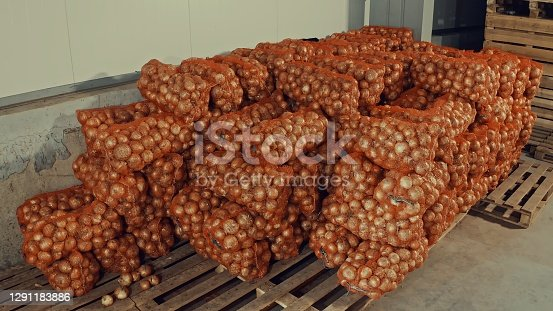 Packaged onions at the distribution warehouse