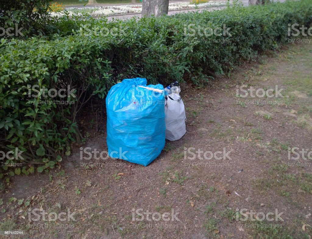 Packages with garbage after cleaning by volunteers in the city park stock photo