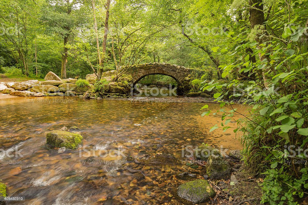 Packhorse Bridge In Woodland stock photo
