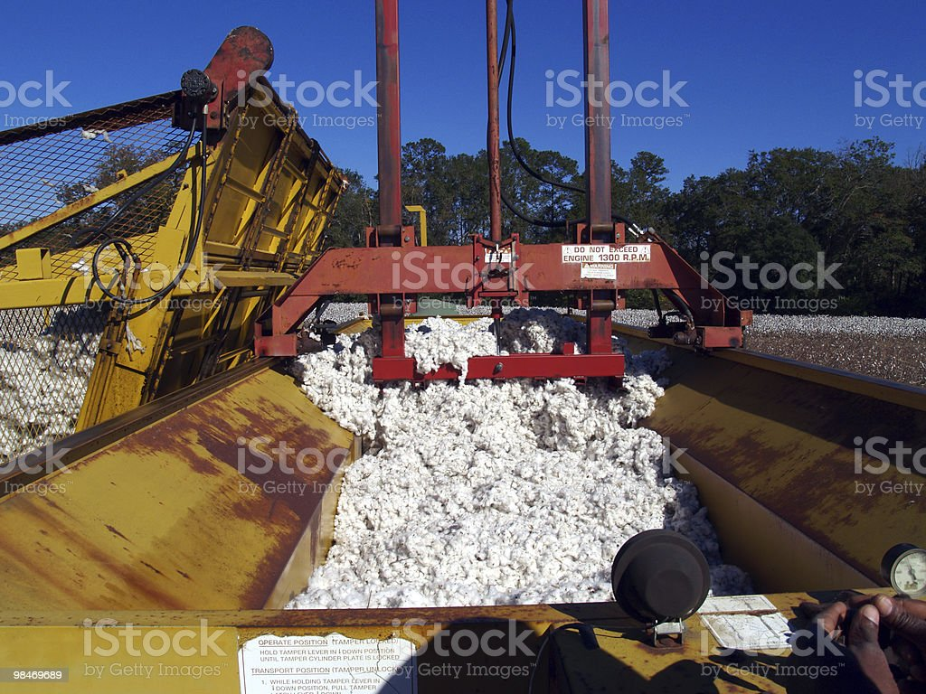 Packing Down the Cotton Module Builder royalty-free stock photo